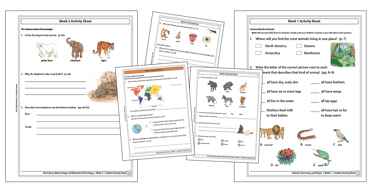 COLOR SCIENCE ACTIVITY SHEETS