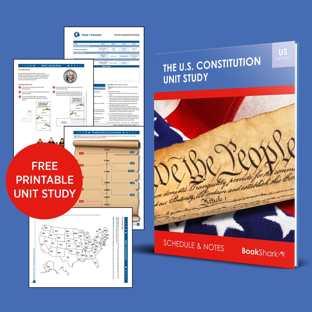 American constitution unit study
