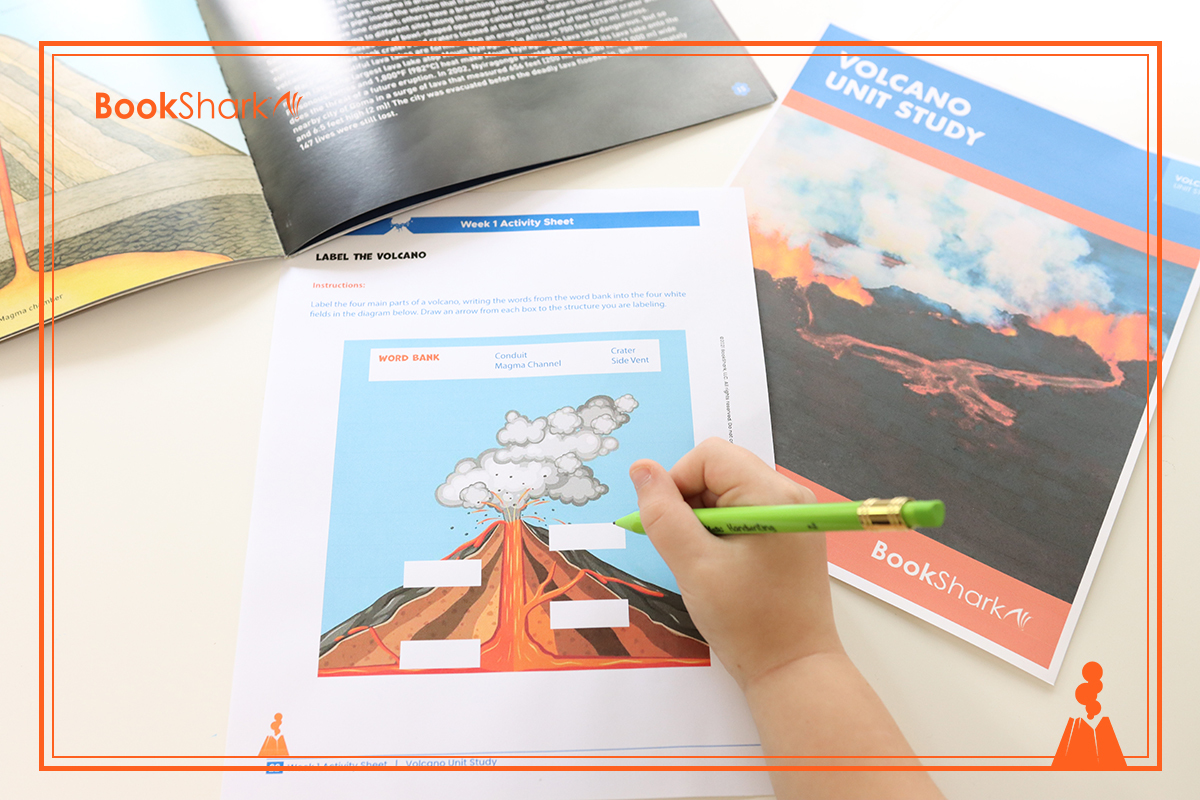 activities for volcano unit study
